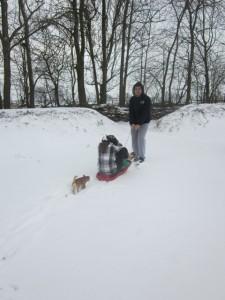 Op de slee door de sneeuw
